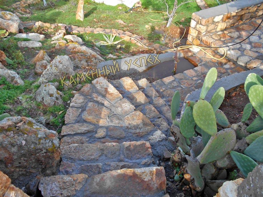 кактусы растут на склоне каменная клумба