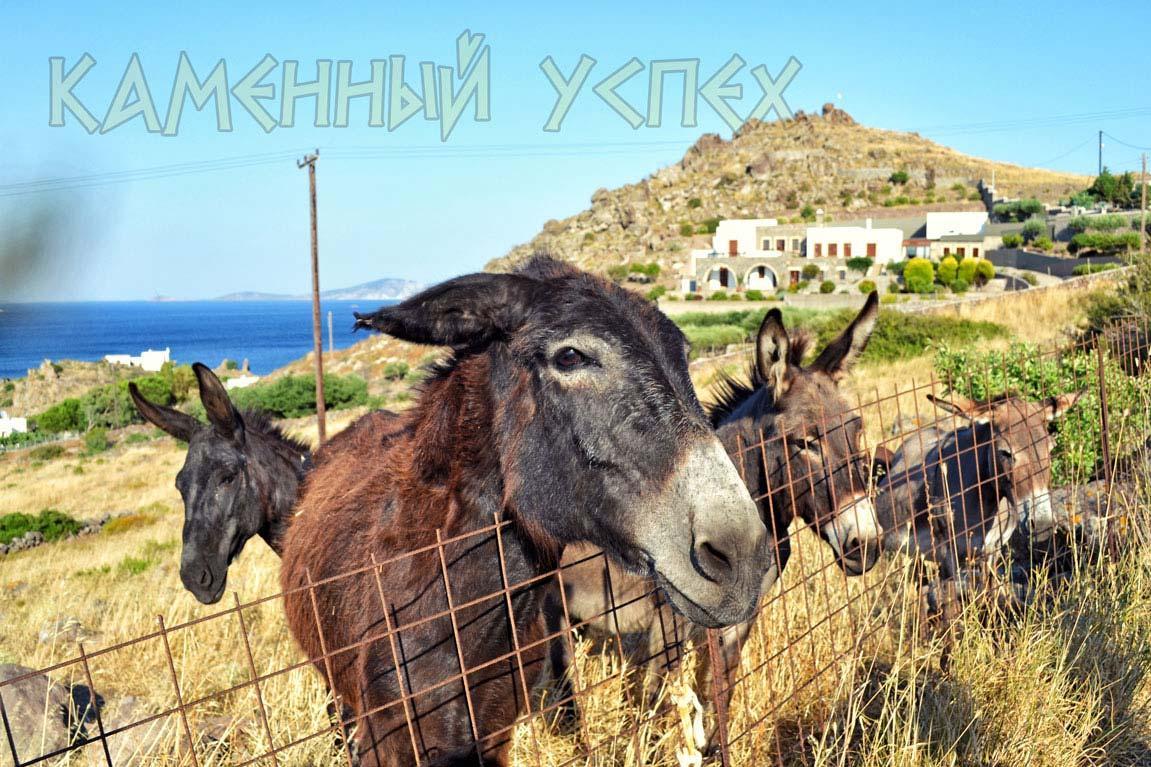 ослики Греции