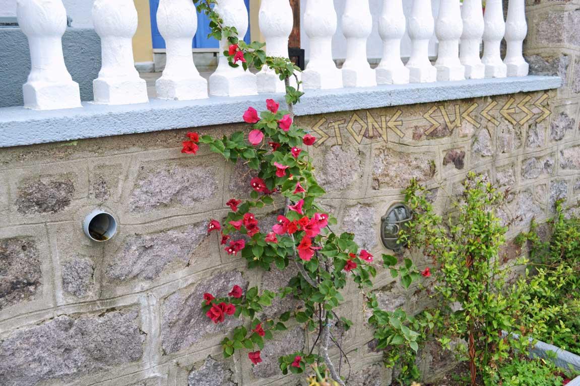 сады Греции