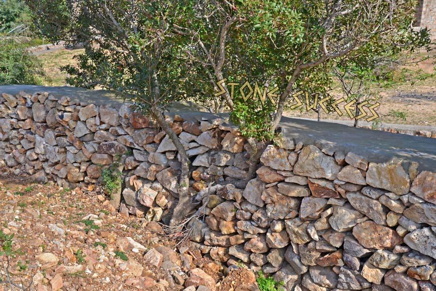 дерево, вписанное в забор
