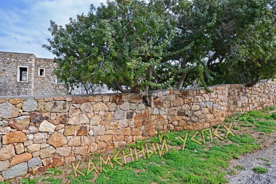 забор с деревьями внутри